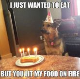 birthdayfire